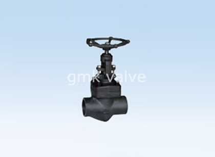 Forged Female Threaded Socket Welded Globe Valve