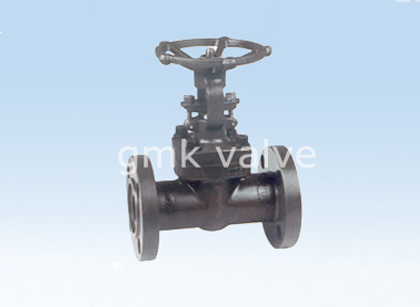 Forged Steel Flange Gate Valve