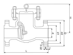 DIN Swing Check Valve picture